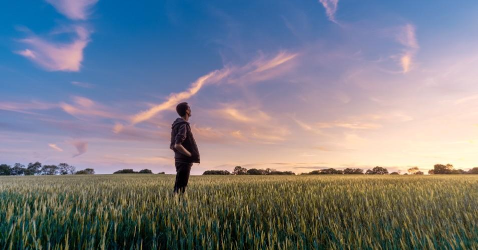 Rapaz a olhar para o horizonte que amanhece, num campo verde